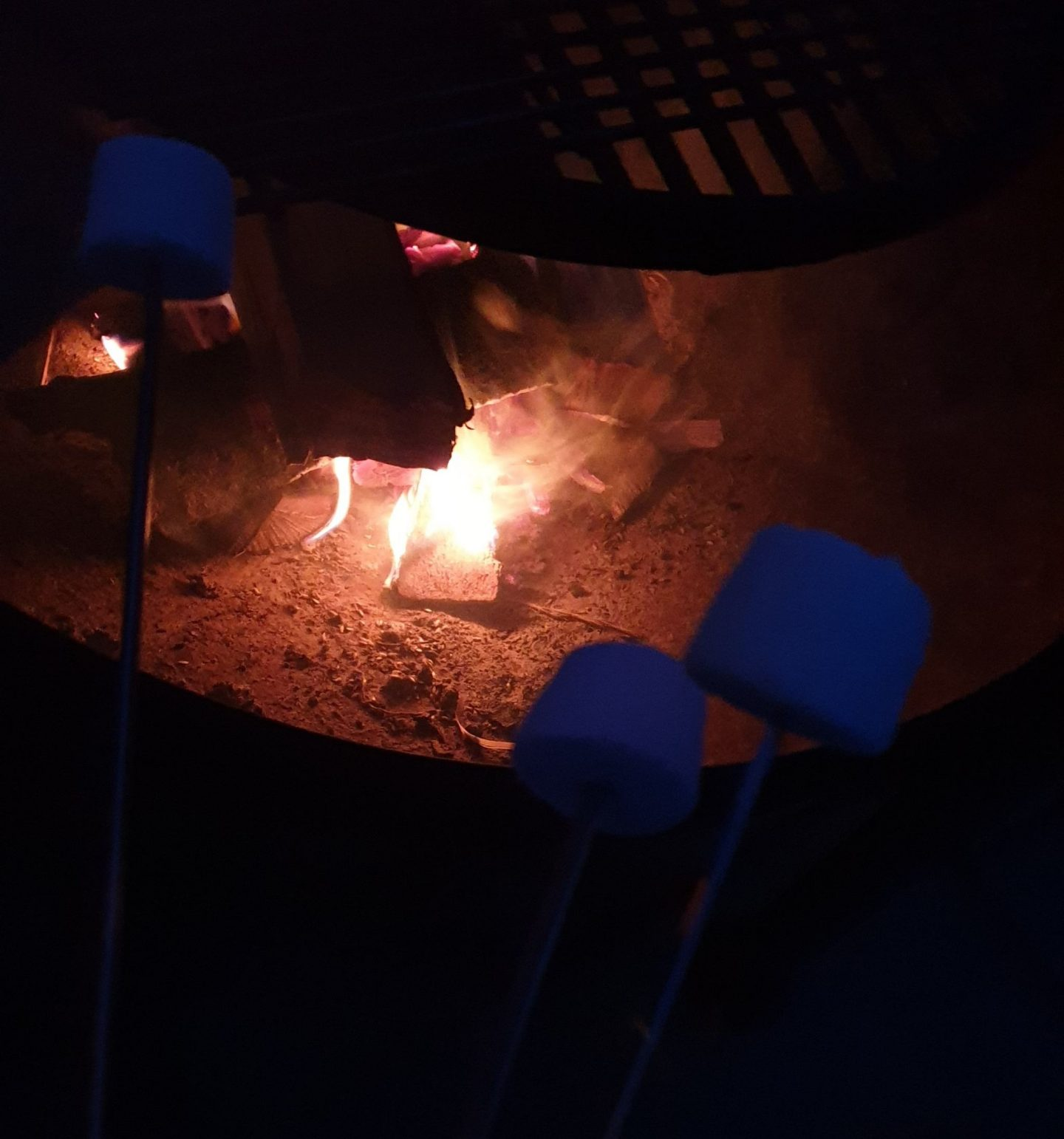 Toasted Marshmallows over the firepit