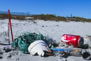 Beach Clean Event